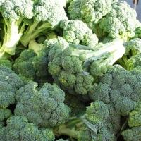 10 τροφές κατά της οστεο-πόρωσης