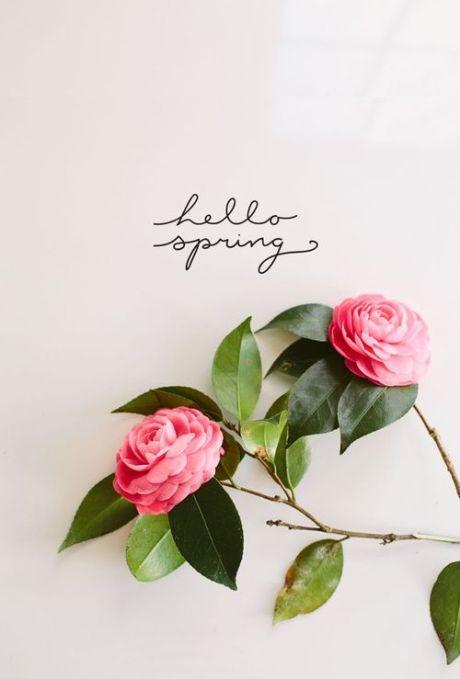 hellospring